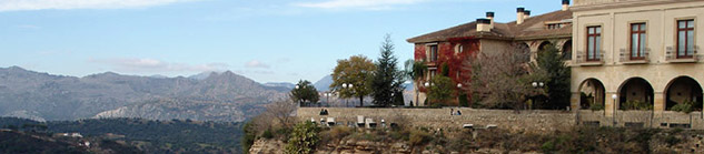 Dagtrips & excursies: Ronda