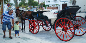 Paardenkoetsen Plaza de los Cangrejos