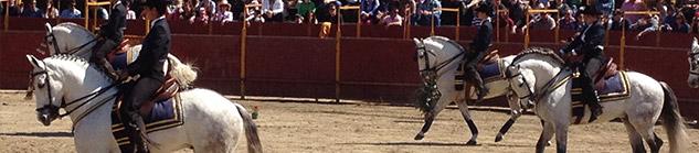 Activiteiten in Andalusie