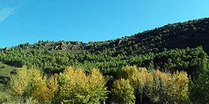Natuurpark Cazorla